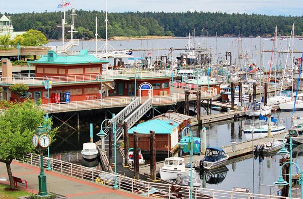 Nanoimo harbour in canada