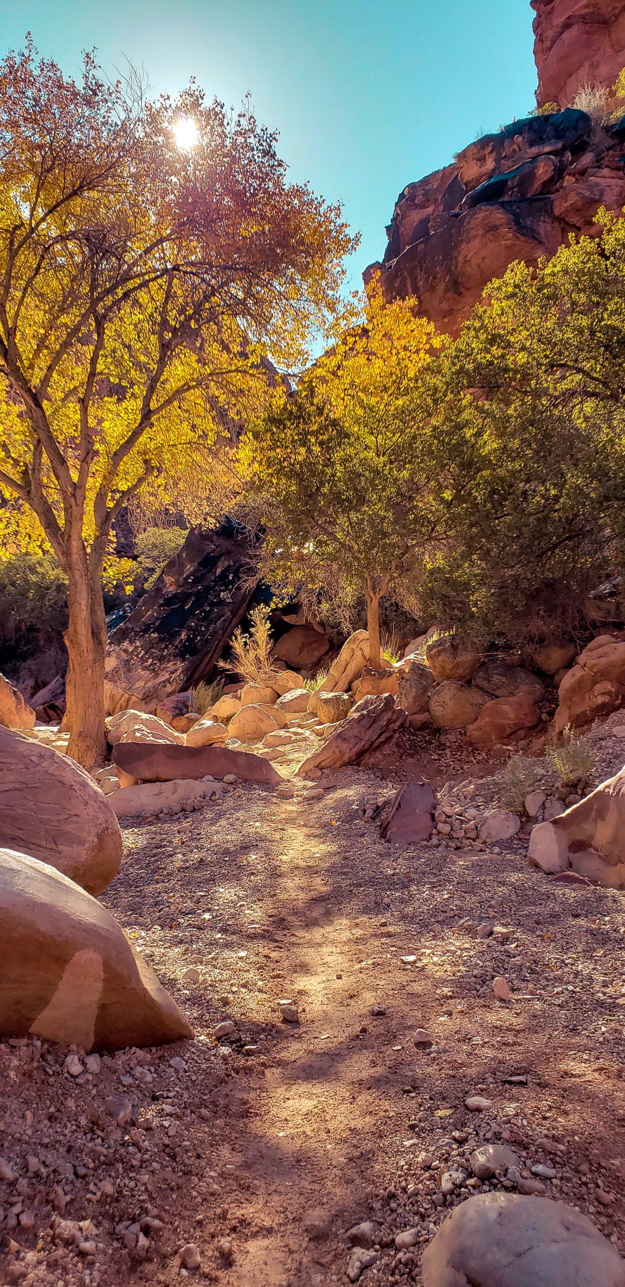 lake havasu falls arizona