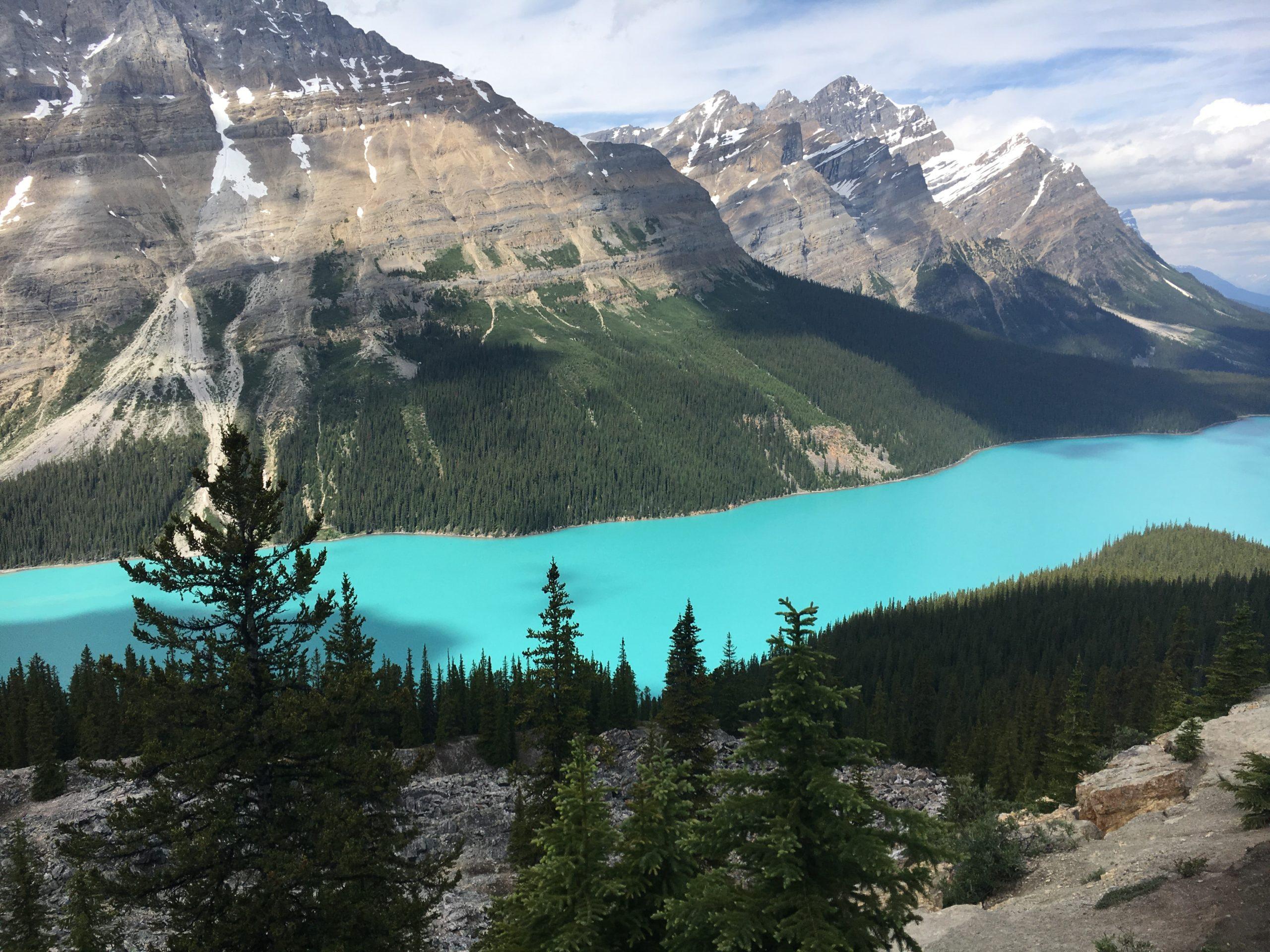 Petyo Lake in Banff National Park