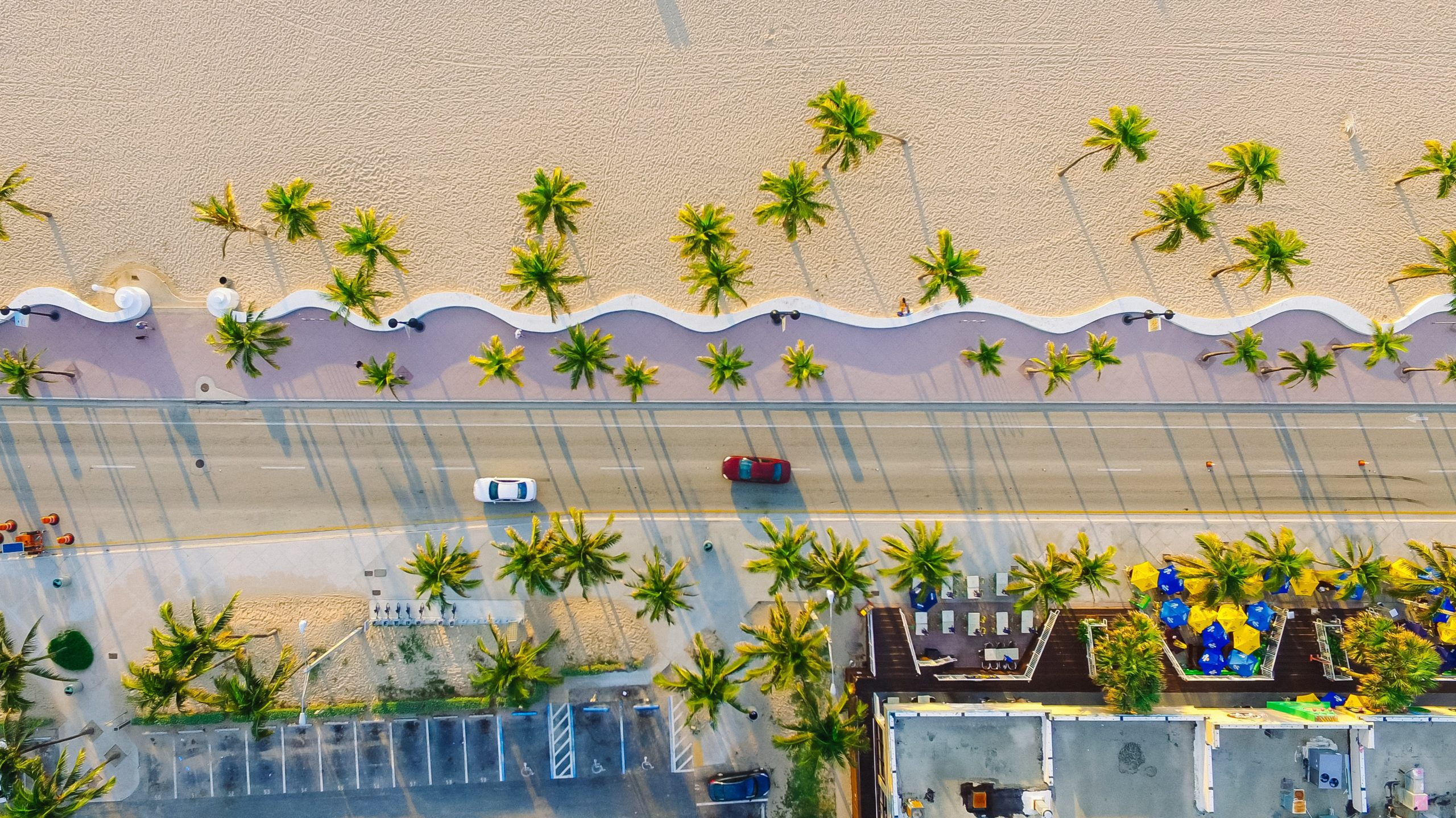 Hidden gems in Miami include these dreamy birds-eye views of palm trees and iconic strips.