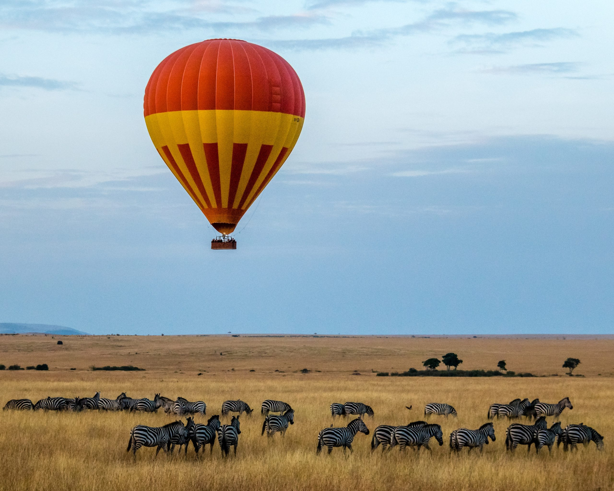 Hot air balloon safari glides over zebra in one of the best countries to visit in Africa.